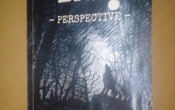 """Eria. Perspective"" – Gabriélle Güvenel"