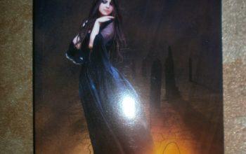 """""""Doamna umbrelor"""" – Mihaela Strenc (Cartea a treia a seriei Orașul Îngerilor)"""