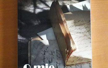 """O mie de impresii divizate"" – Suzănica Tănase"