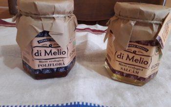 Mierea de salcâm și mierea polifloră – diferențe și beneficii