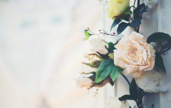 Îţi organizezi nunta în 2020? Iată cum poţi profita de lunile de iarnă