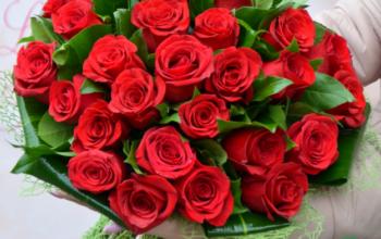 flori divaflor