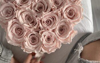 De ce sa faci cadou trandafiri criogenati