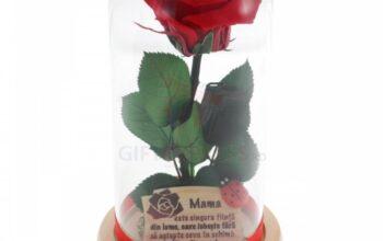 Cadouri originale, pentru femeia specială din viața ta, numai la Gift Express